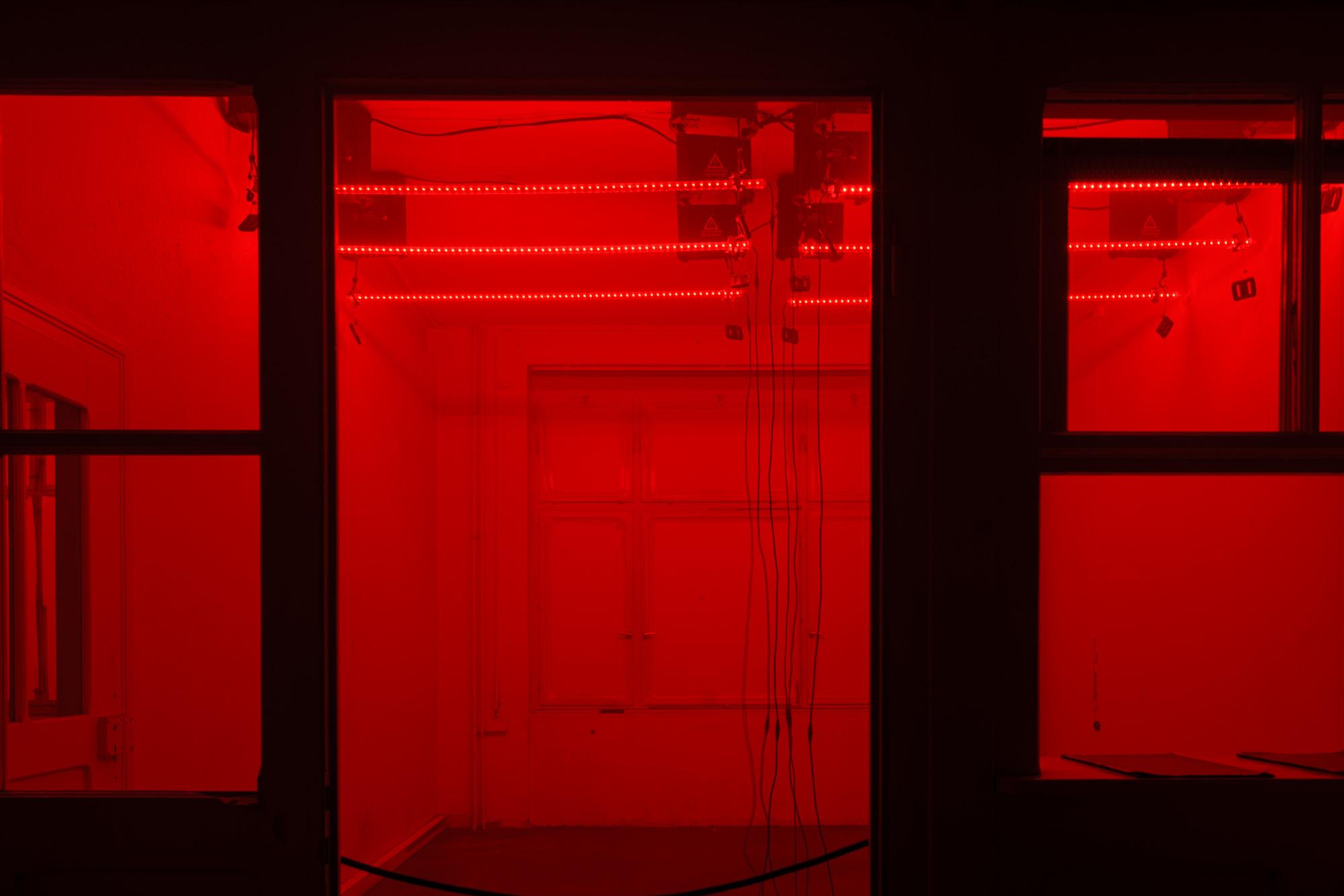 15-12-04 AV Exciters - SelEstArt © Bartosch Salmanski - www.128db.fr 0026